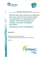 Etat des lieux et expériences de réhabilitation des filières filtres enterrés (sable ou zéolithe) et bassin d'infiltration percolation