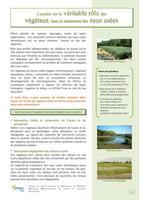 Role-des-vegetaux-dans-le-traitement-des-eaux-usees_EPNAC_2014